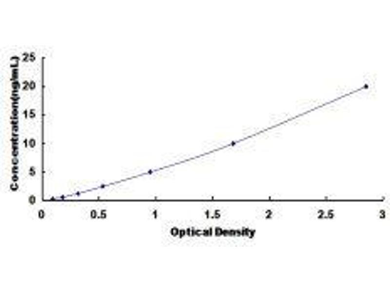 Histone Deacetylase 4 (HDAC4) ELISA Kit