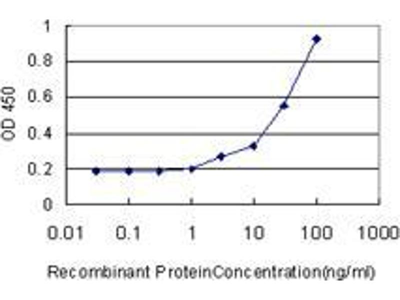 Immunohistochemistry (IHC) image for anti-Decorin antibody (DCN) (AA 1-360) (ABIN396139)