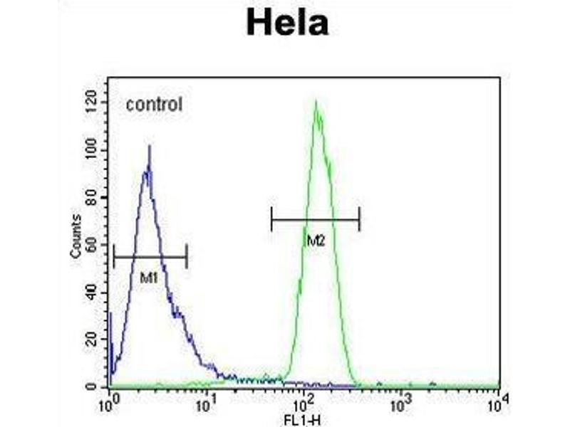 Flow Cytometry (FACS) image for anti-Transmembrane Protein 173 (TMEM173) (AA 318-348), (C-Term) antibody (ABIN955254)