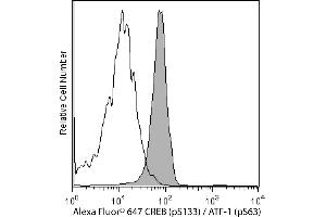 Flow Cytometry (FACS) image for anti-CREB1 antibody (CAMP Responsive Element Binding Protein 1) (pSer133) (Alexa Fluor 647) (ABIN1177048)