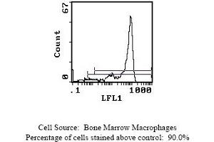 Flow Cytometry (FACS) image for anti-Ly-6G Neutrophil Marker antibody (FITC) (ABIN114271)