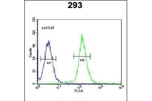 Image no. 3 for anti-Cell Division Cycle 45 Homolog (S. Cerevisiae) (CDC45) (AA 236-263) antibody (ABIN5535993)