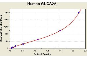 Image no. 1 for Guanylate Cyclase Activator 2A (Guanylin) (GUCA2A) ELISA Kit (ABIN1115323)