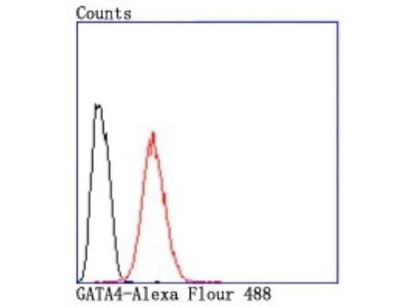 Flow Cytometry (FACS) image for anti-GATA Binding Protein 4 (GATA4) (AA 1-100) antibody (ABIN5946417)