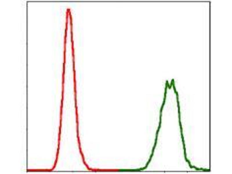 Flow Cytometry (FACS) image for anti-Neural Precursor Cell Expressed, Developmentally Down-Regulated 8 (NEDD8) antibody (ABIN969547)