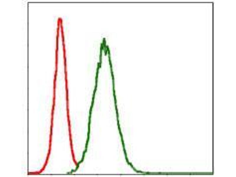 Flow Cytometry (FACS) image for anti-Matrix Metallopeptidase 3 (Stromelysin 1, Progelatinase) (MMP3) antibody (ABIN969539)