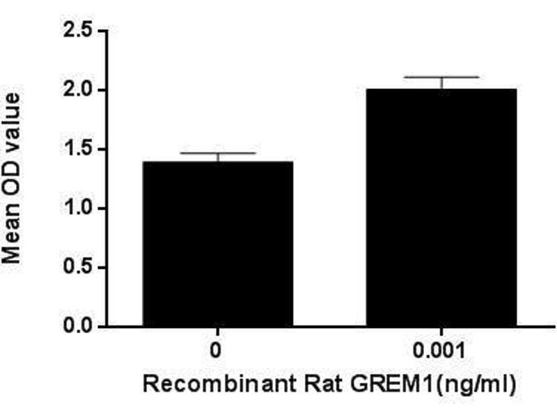 image for Gremlin 1 (GREM1) (Active) protein (ABIN6119725)