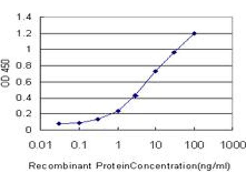 Image no. 1 for anti-Kallikrein 6 (KLK6) (AA 91-190) antibody (ABIN519338)