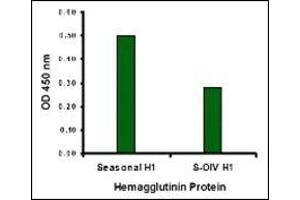 Enzyme Immunoassay (EIA) image for anti-Seasonal H1N1 Hemagglutinin antibody (ABIN500694)