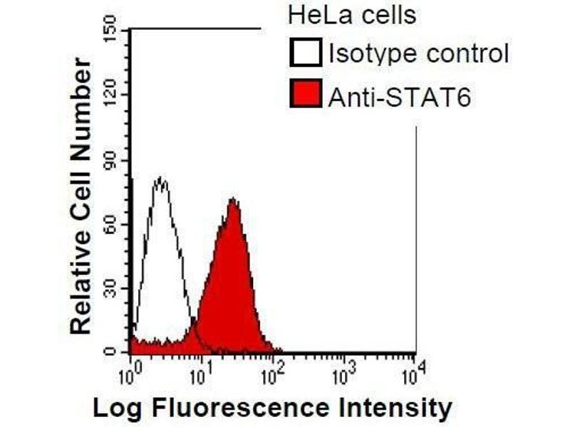 Flow Cytometry (FACS) image for anti-STAT6 antibody (Signal Transducer and Activator of Transcription 6, Interleukin-4 Induced) (ABIN930928)