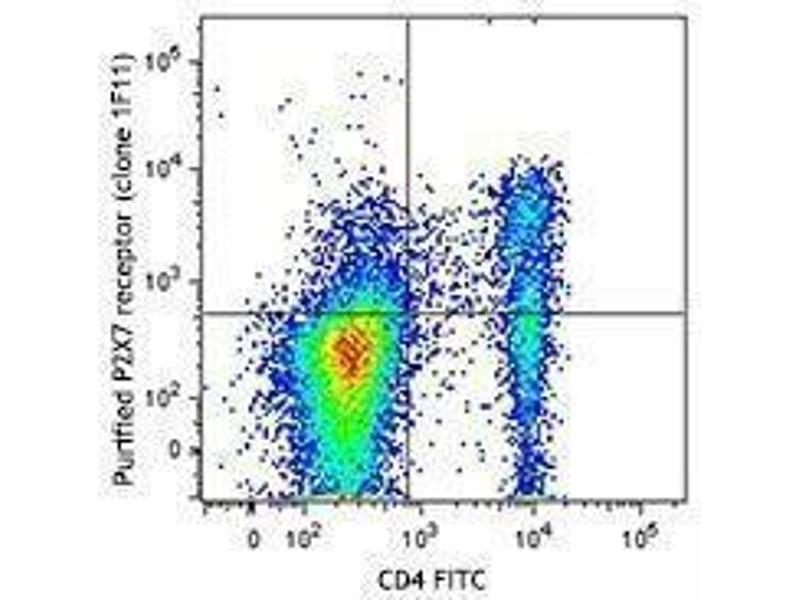 Flow Cytometry (FACS) image for anti-Purinergic Receptor P2X, Ligand-Gated Ion Channel, 7 (P2RX7) antibody (ABIN2665313)