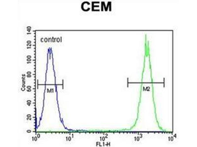 Flow Cytometry (FACS) image for anti-Dual Oxidase 2 (DUOX2) (AA 520-550), (Middle Region) antibody (ABIN951993)