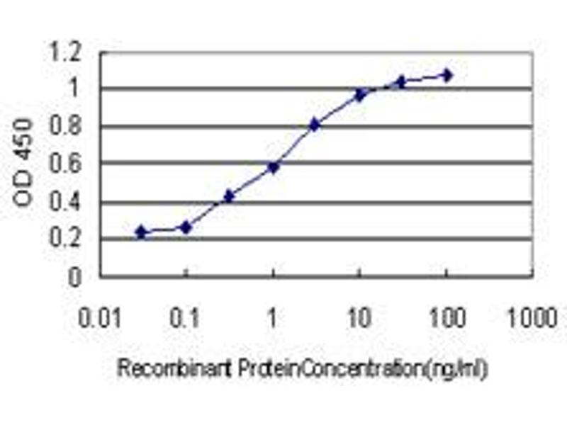 ELISA image for anti-Arrestin, beta 2 (ARRB2) (AA 300-410) antibody (ABIN393334)