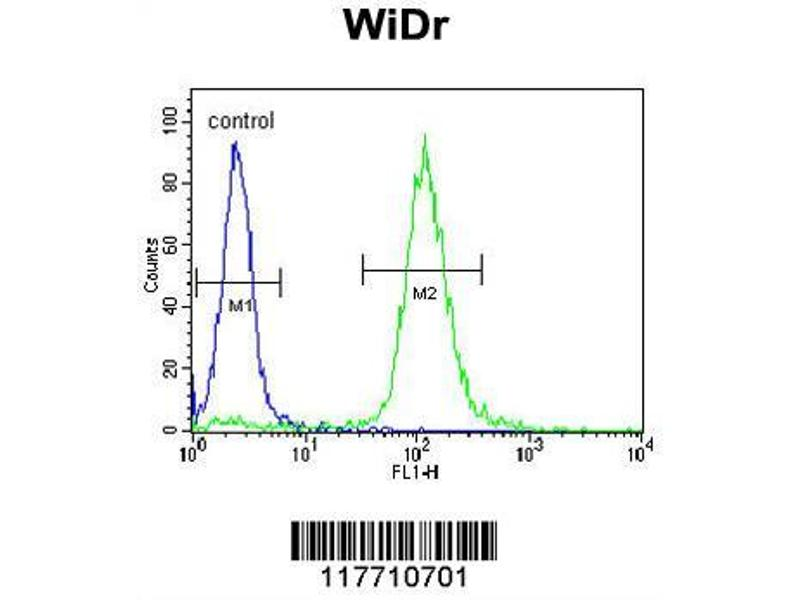 Flow Cytometry (FACS) image for anti-Neurotrophic Tyrosine Kinase, Receptor, Type 1 (NTRK1) antibody (ABIN652382)