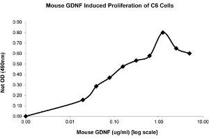 Image no. 1 for Glial Cell Line Derived Neurotrophic Factor (GDNF) protein (ABIN6700938)