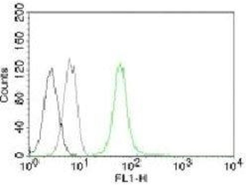 Flow Cytometry (FACS) image for anti-Vimentin (VIM) antibody (ABIN3026782)