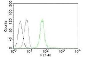 Flow Cytometry (FACS) image for anti-Vimentin antibody (VIM) (ABIN3026782)