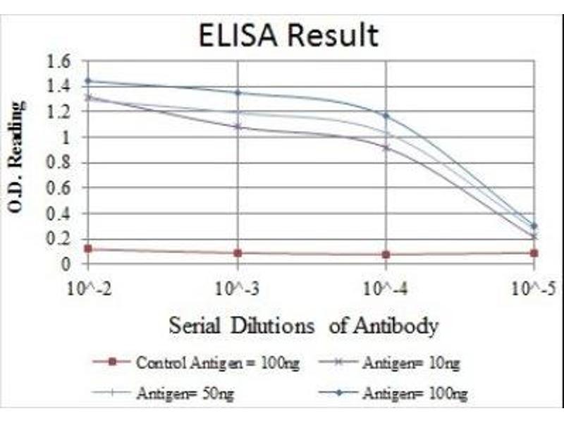 ELISA image for anti-Nuclear Factor of kappa Light Polypeptide Gene Enhancer in B-Cells 1 (NFKB1) antibody (ABIN4339352)
