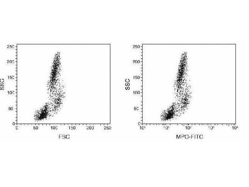 Flow Cytometry (FACS) image for FIX&PERM® Kit (ABIN2693723)
