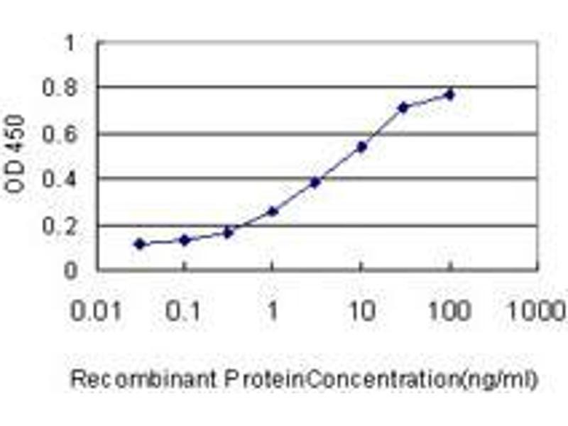 Immunohistochemistry (IHC) image for anti-Caspase 1 (CASP1) (AA 1-100) antibody (ABIN393212)
