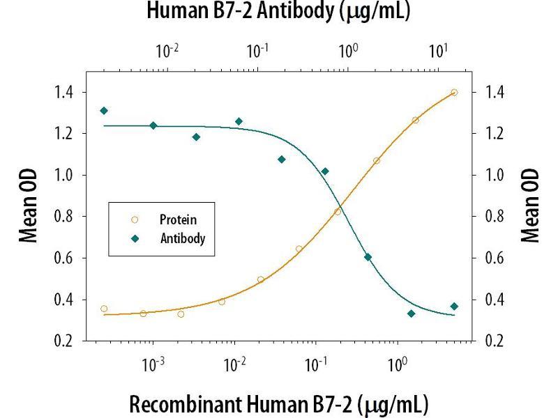 Neutralization (Neut) image for anti-CD86 Molecule (CD86) (AA 23-244) antibody (ABIN4899735)