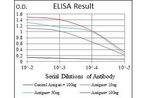 ELISA image for anti-IL1B antibody (Interleukin 1, beta) (ABIN969215)