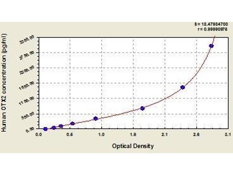 Orthodenticle Homeobox 2 (OTX2) ELISA Kit