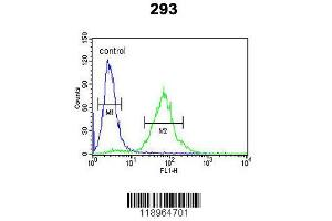 Flow Cytometry (FACS) image for anti-SET Domain Containing (Lysine Methyltransferase) 8 (SETD8) (AA 220-249), (Center) antibody (ABIN390472)
