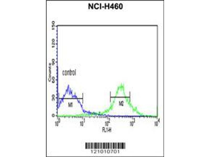 Flow Cytometry (FACS) image for anti-MYD88 antibody (Myeloid Differentiation Primary Response Gene (88)) (ABIN2448228)