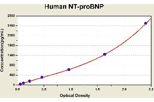 Image no. 2 for Pro-Brain Natriuretic Peptide (proBNP) ELISA Kit (ABIN1116121)