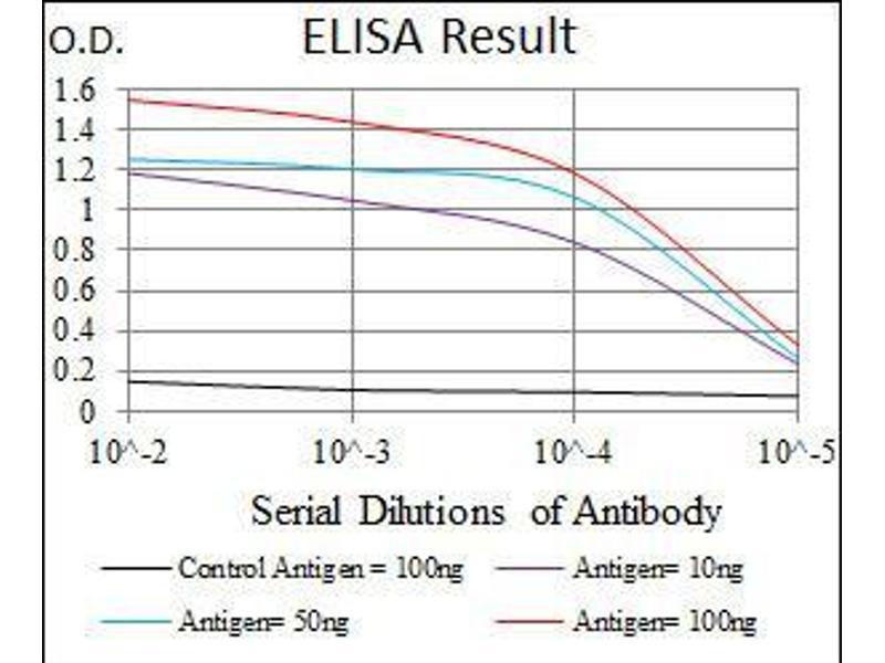ELISA image for anti-Myeloproliferative Leukemia Virus Oncogene (MPL) antibody (ABIN969542)