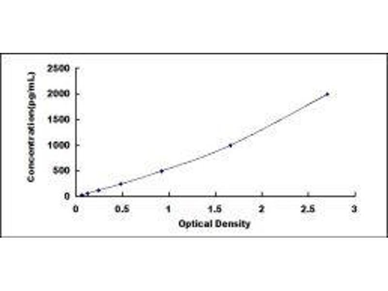 VGF Nerve Growth Factor Inducible (VGF) ELISA Kit
