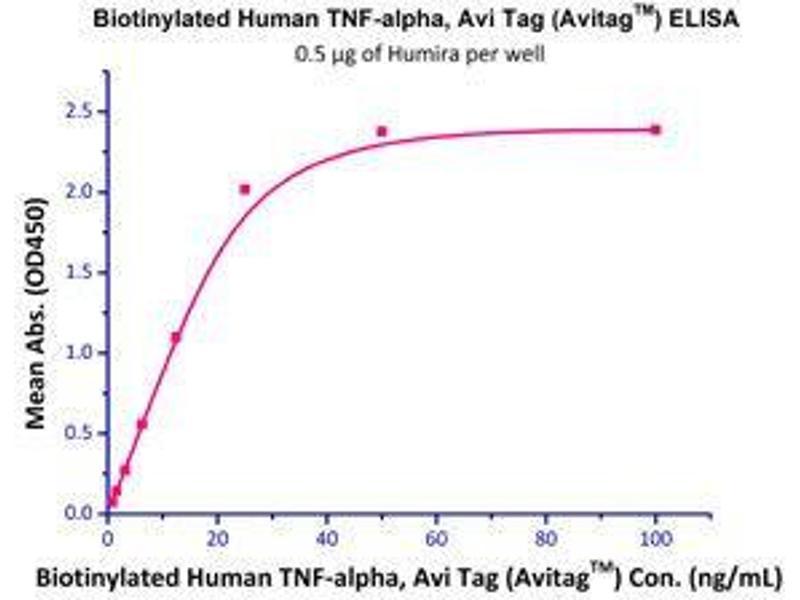 Binding Studies (Bind) image for Tumor Necrosis Factor (TNF) (AA 77-233) (Active) protein (AVI tag,Biotin,His tag) (ABIN2870564)