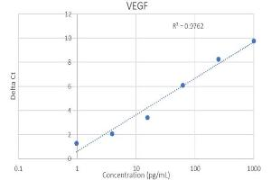 Image no. 4 for Vascular Endothelial Growth Factor (VEGF) IQ-ELISA Kit (ABIN5680029)