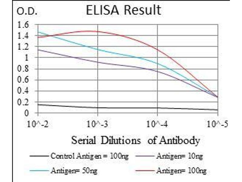 Image no. 2 for anti-HLA-DR-gamma (CD74) (AA 1-106) antibody (ABIN1724870)