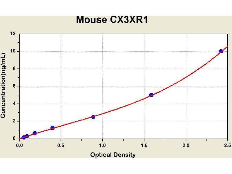 Chemokine (C-X3-C Motif) Receptor 1 (CX3CR1) ELISA Kit