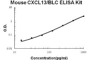Image no. 1 for Chemokine (C-X-C Motif) Ligand 13 (CXCL13) ELISA Kit (ABIN1672786)