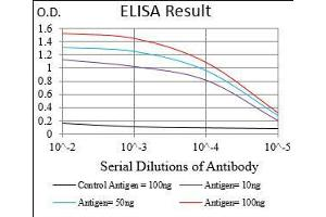 ELISA image for anti-Ribosomal Protein S6 Kinase, 90kDa, Polypeptide 2 (RPS6KA2) (AA 415-734) antibody (ABIN5542368)