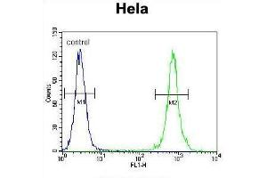 Flow Cytometry (FACS) image for anti-TRADD antibody (TNFRSF1A-Associated Via Death Domain) (AA 133-159) (ABIN955307)