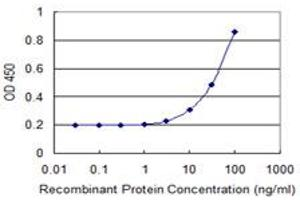 Image no. 1 for anti-Mitochondrial Translational Release Factor 1 (MTRF1) (AA 1-100) antibody (ABIN523109)