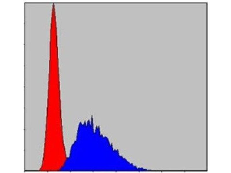 Flow Cytometry (FACS) image for anti-Caspase 8, Apoptosis-Related Cysteine Peptidase (CASP8) antibody (ABIN4288173)