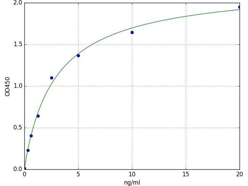Histone Deacetylase 7 (HDAC7) ELISA Kit