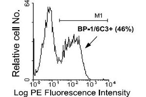 Flow Cytometry (FACS) image for anti-Glutamyl Aminopeptidase (Aminopeptidase A) (ENPEP) antibody (PE) (ABIN371045)
