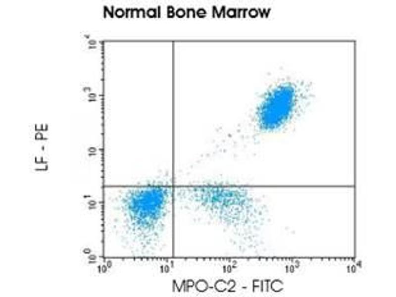 Image no. 1 for anti-Myeloperoxidase-C2 (FITC) and anti-Lactoferrin (PE) antibody pair (ABIN5662641)