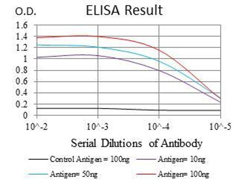 ELISA image for anti-Neural Precursor Cell Expressed, Developmentally Down-Regulated 8 (NEDD8) antibody (ABIN969547)
