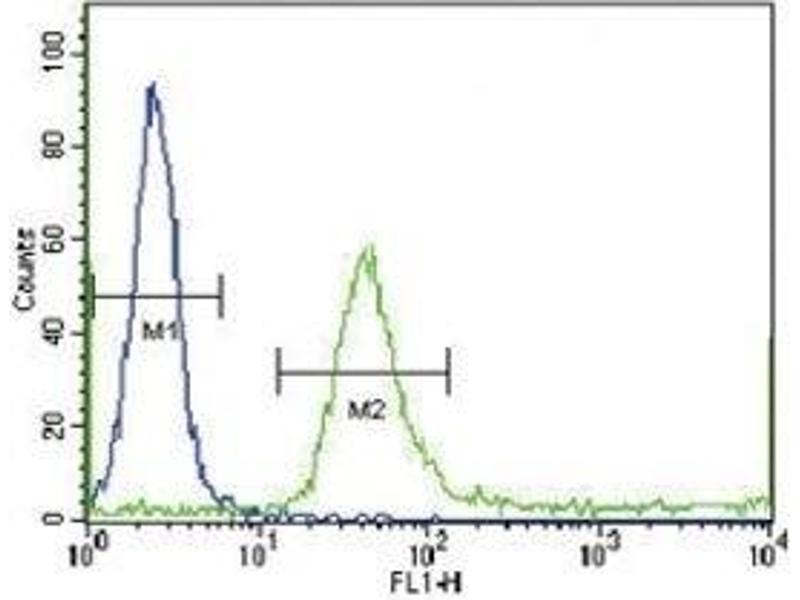Flow Cytometry (FACS) image for anti-Insulin-Like Growth Factor Binding Protein 4 (IGFBP4) (AA 66-92) antibody (ABIN3031355)