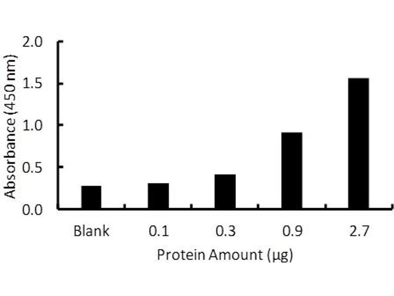 Peroxisome Proliferator-Activated Receptor delta (PPARD) ELISA Kit