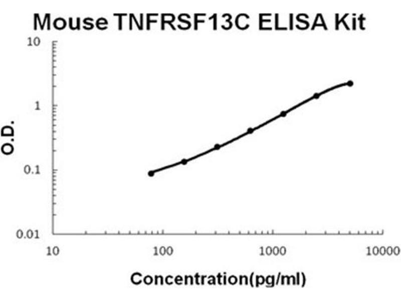 Tumor Necrosis Factor Receptor Superfamily, Member 13C (TNFRSF13C) ELISA Kit