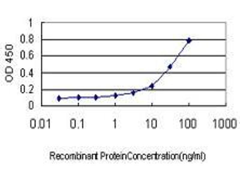 Immunohistochemistry (IHC) image for anti-Glyceraldehyde-3-Phosphate Dehydrogenase, Spermatogenic (GAPDHS) (AA 1-409) antibody (ABIN395555)