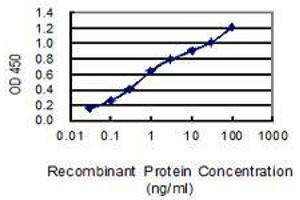 Image no. 5 for anti-High Mobility Group Box 1 (HMGB1) (AA 1-215) antibody (ABIN1326935)